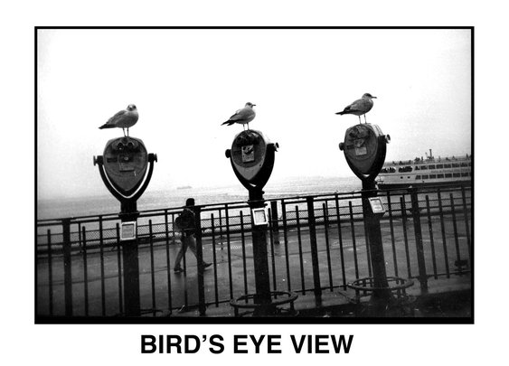 See New York Though The Eyes Of Flo Fox - A Blind Photographer - DIY Photography