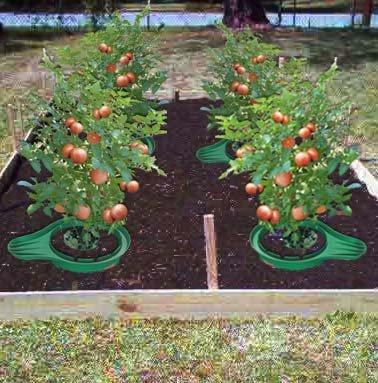 5 Beginners Tips to Gardening + Gardening Guide - Craft Like This