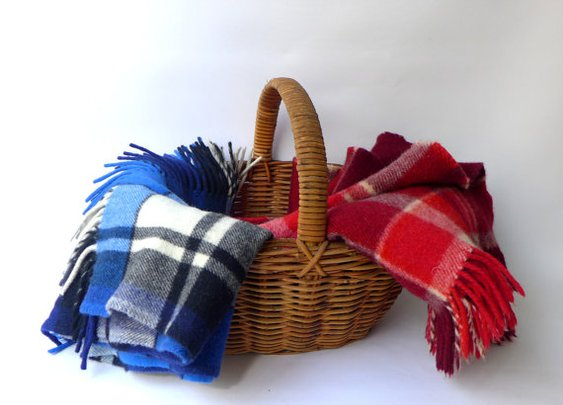 Vintage Mid century red or blue plaid wool picnic by evaelena