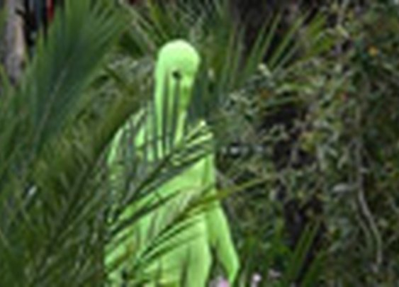 - The Zentai Project -