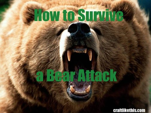 How to Survive a Bear Attack - Craft Like This