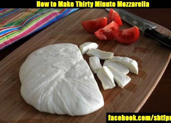 How to Make Thirty Minute Mozzarella - SHTF Preparedness