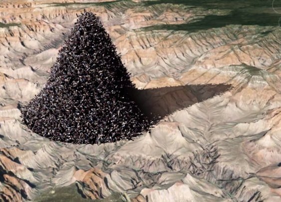 If You Dumped Every Human Into The Grand Canyon, This Is What It Would Look Like (VIDEO)