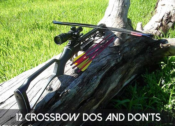 12 Crossbow Dos and Don'ts - SHTF Preparedness