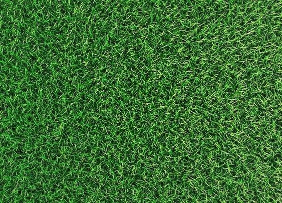 Top 5 Tips for a Greener Lawn - Bob Vila