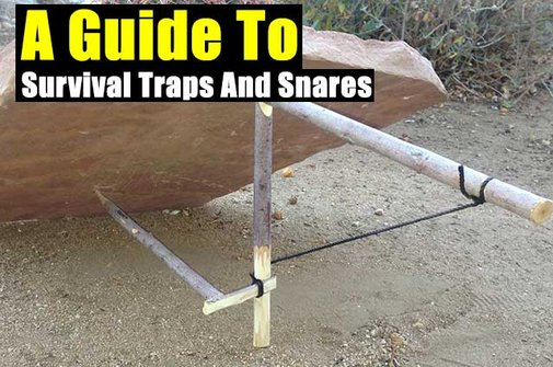 A Guide To Survival Traps And Snares - SHTF Preparedness