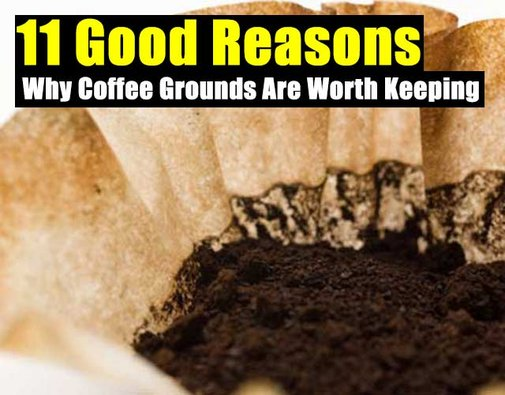 11 Good Reasons Why Coffee Grounds Are Worth Keeping - SHTF Preparedness