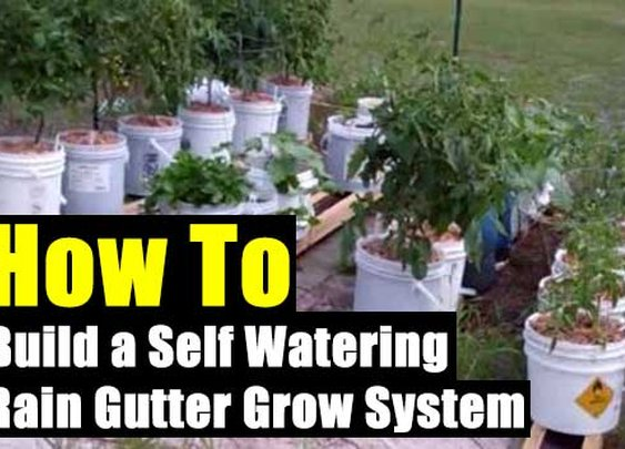 How to Build a Self Watering Rain Gutter Grow System - SHTF Preparedness