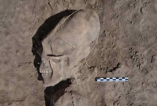 Archeologists Unearth Alien-Like Skulls In A Mexico Cemetery