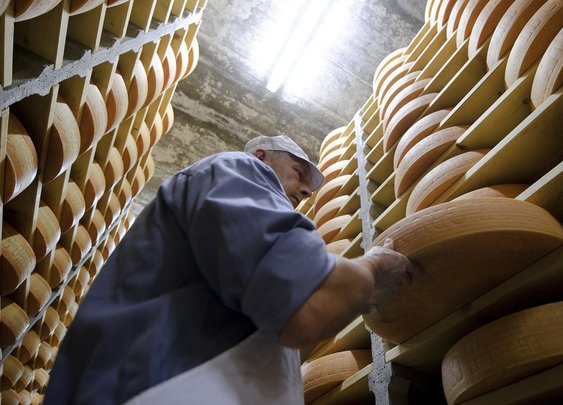 The FDA is cracking down on wood-aged cheese — and it's a terrible idea