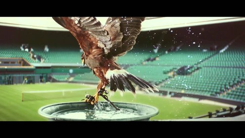 Perfectionists: Rufus - The Real Hawk-Eye | Stella Artois UK - YouTube