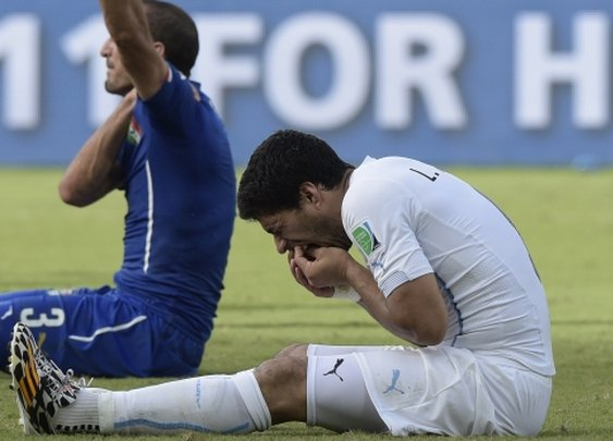 You are more likely to be bitten by Luis Suarez than a shark