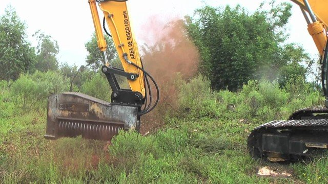 Powerful Forestry Mulcher Shreds Through Four-Story-Tall Pine Trees and More in a Matter of Seconds