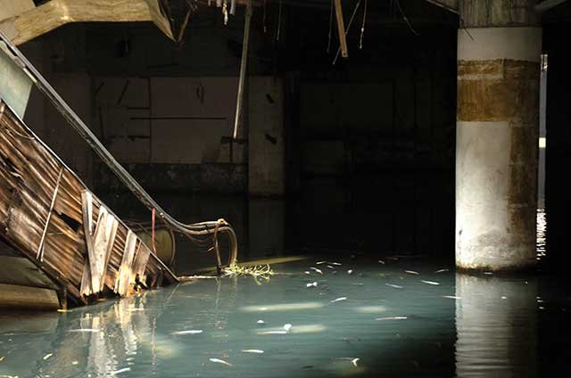Abandoned Bangkok Shopping Mall Hides a Fishy Secret | Tiny Houses, Cabins & Retreats