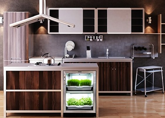 Urban Cultivator Grows 100% Organic Hydroponic Greens in a Stylish and Fully Automated Indoor Garden   Inhabitat