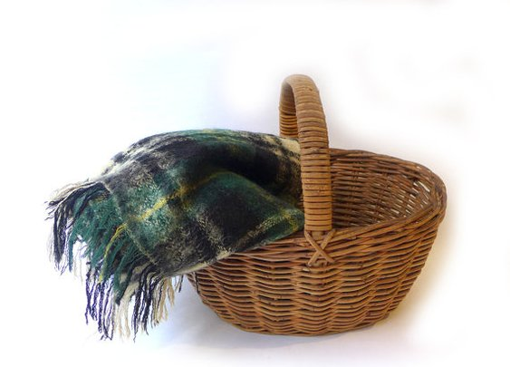 Vintage retro green and white plaid mohair picnic by evaelena