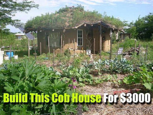 Build This Cob House For $3000 - SHTF, Emergency Preparedness, Survival Prepping, Homesteading