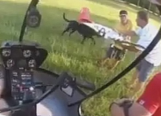 Chopper Pilot Plucks R/C from tree, Gives Back To Kid