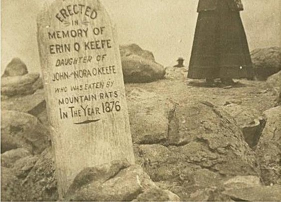 Eaten. By. Mountain. Rats in 1876.