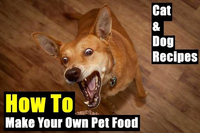 How To Make Your Own Pet Food For SHTF - SHTF, Emergency Preparedness, Survival Prepping, Homesteading