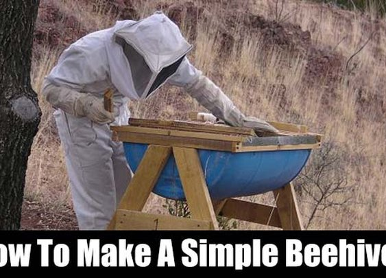 How To Make A Simple Beehive - SHTF, Emergency Preparedness, Survival Prepping, Homesteading