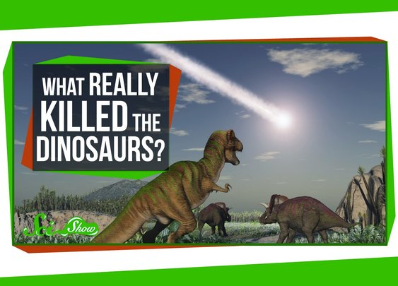 What Really Killed the Dinosaurs? - YouTube
