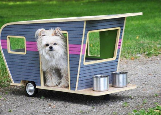 Miniature Dog Campers