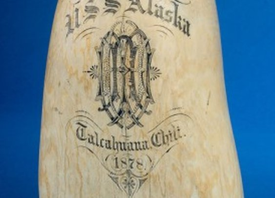 On the Water - USS Alaska Scrimshaw Sperm Whale Tooth