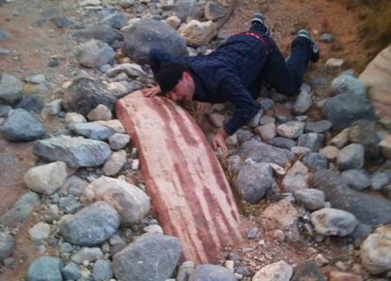 Meanwhile, on planet Bacon... - Imgur