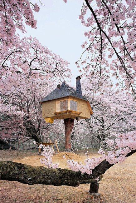 Japan Teahouse - when houses are like a fairy tale