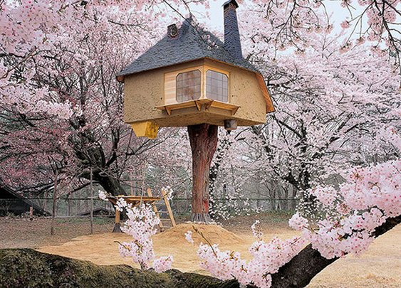 Japan Teahouse - when houses are like a fairy tale