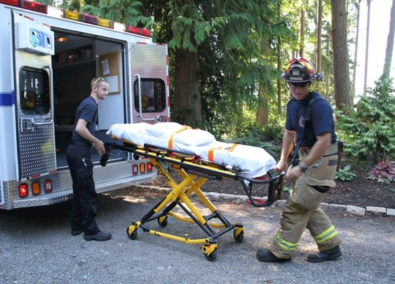 UPDATE   Father grabs 3-year-old daughter as she falls from cliff on Bainbridge Island - Bainbridge Island Review