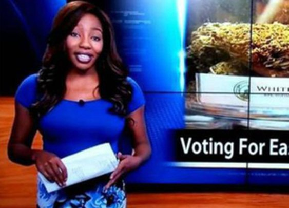 Reporter resigns on live TV to join fight to legalize marijuana in Alaska