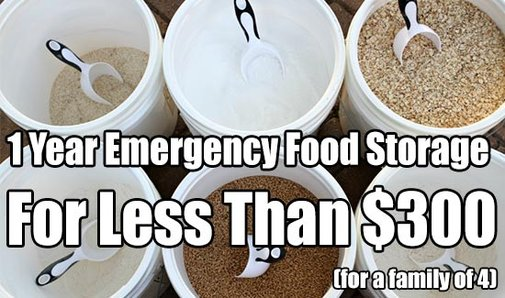 1 Year Emergency Food Storage For Less Than $300 - SHTF & Prepping Central