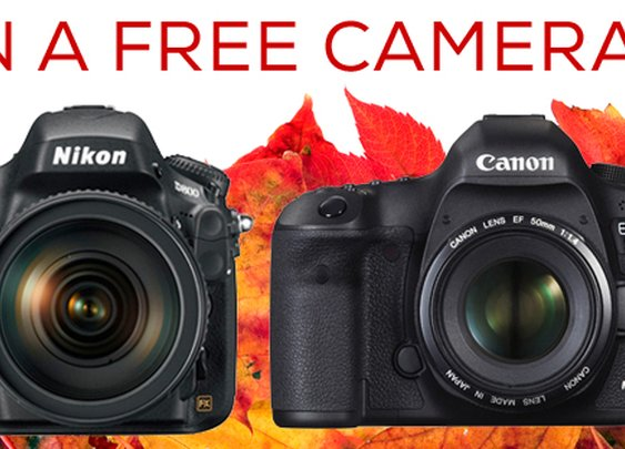 WIN YOUR CHOICE: Nikon D800 OR Canon 5D Mark III!