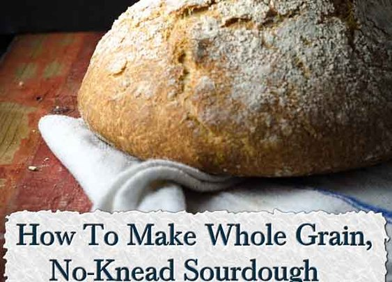 How To Make Whole Grain, No-Knead Sourdough - LivingGreenAndFrugally.com