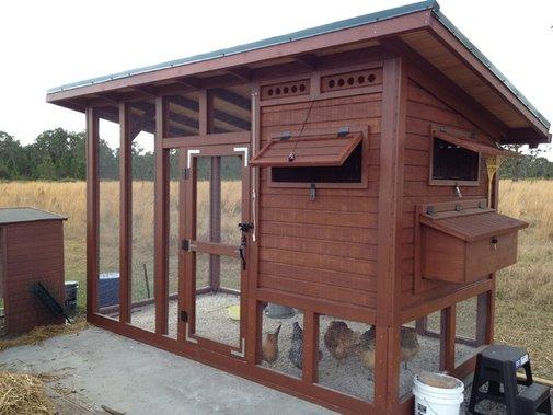 The Palace - BackYard Chickens Community