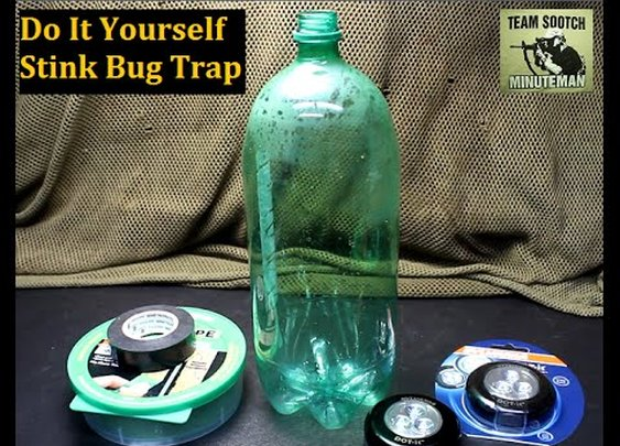 Got a Stink Bug Infestation?