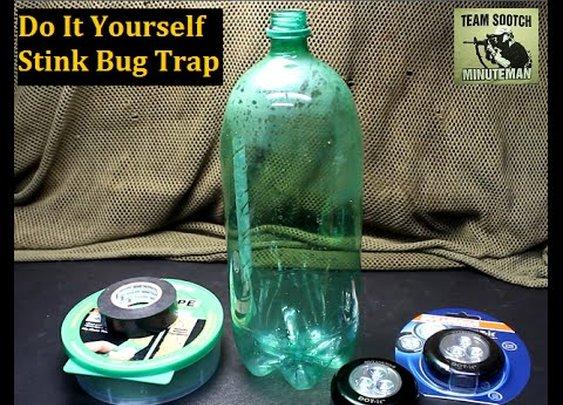 Got a Stink Bug Infestation?