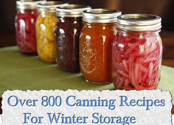 Over 800 Canning Recipes For Winter Storage - LivingGreenAndFrugally.com