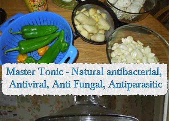 Master Tonic - Natural antibacterial, Antiviral, Anti Fungal, Antiparasitic - LivingGreenAndFrugally.com