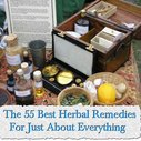 The 55 Best Herbal Remedies For Just About Everything - LivingGreenAndFrugally.com