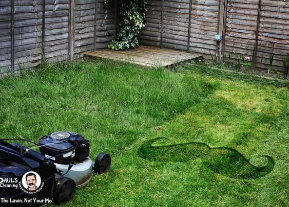 Mow The Lawn, Not Your Mo'