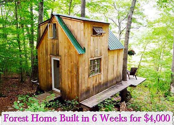 Forest Home Built in 6 Weeks for $4,000 - LivingGreenAndFrugally.com
