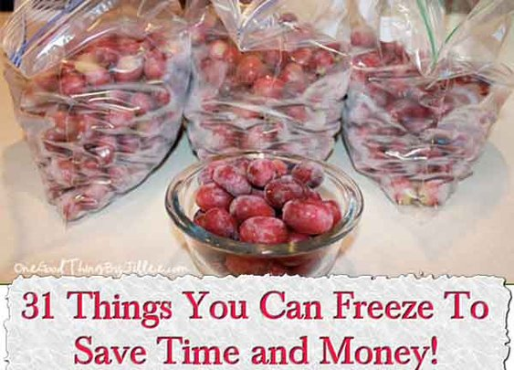 31 Things You Can Freeze To Save Time and Money! - LivingGreenAndFrugally.com