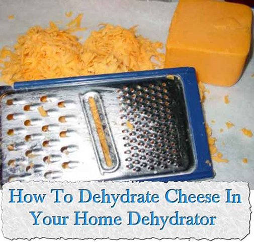 How To Dehydrate Cheese In Your Home Dehydrator - LivingGreenAndFrugally.com