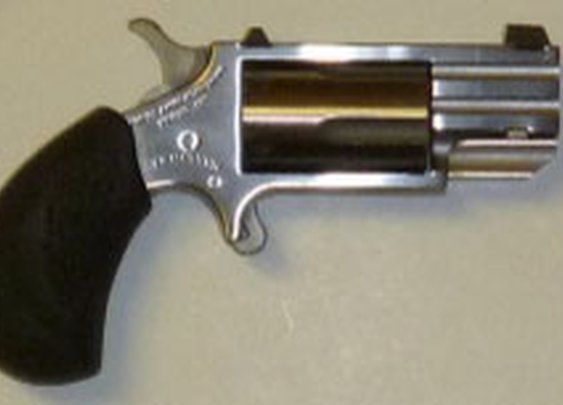 North American Arms PUG Mini-Revolver