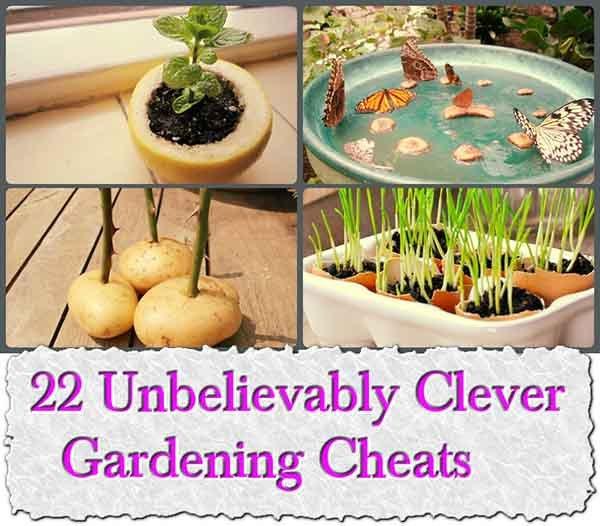22 Clever Gardening Cheats - LivingGreenAndFrugally.com