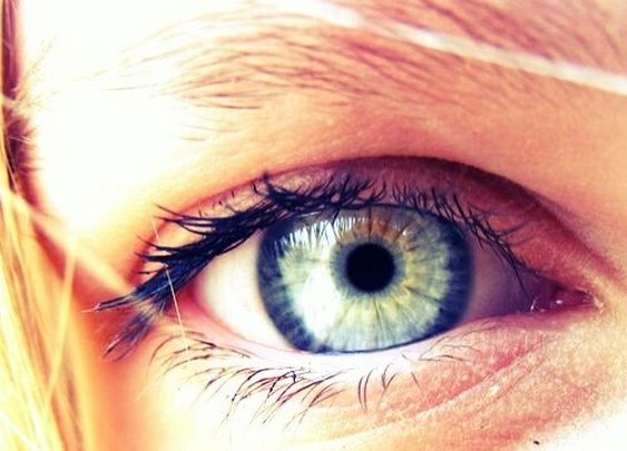 We Tested Centuries-Old Eyes For Colorblindness
