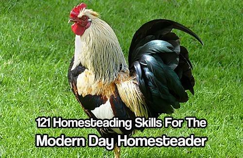 121 Homesteading Skills For The Modern Day Homesteader - SHTF & Prepping Central